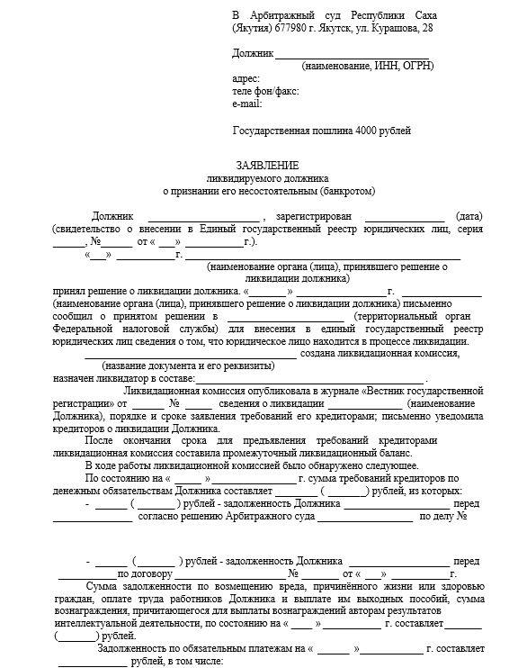 bankrotstvo-likvidiruemogo-dolzhnika001