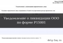 Форма Р15001